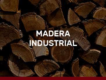 Maquinaria para la biomasa